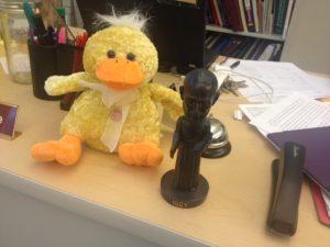 Xavier duck