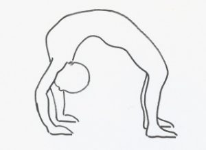 wheel-hatha-yoga-pose