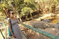 croc and me